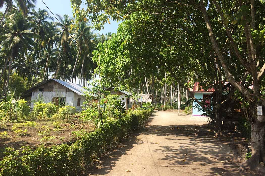 Papouasie village rue