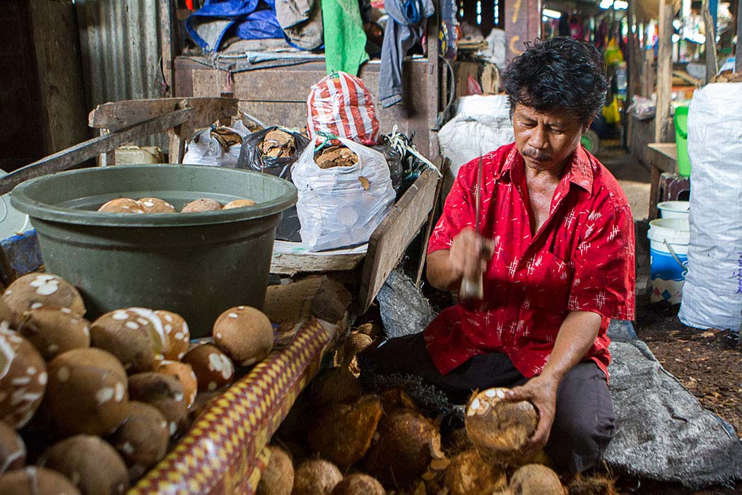 Sorong marche coco