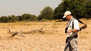 Mark Harvey Walking Safari